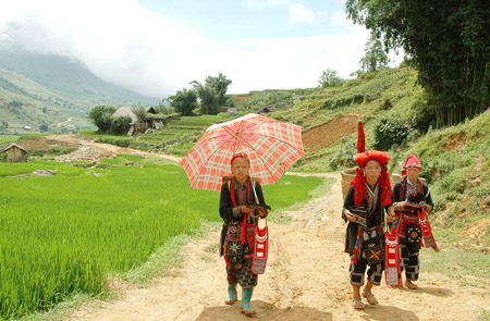 Tours in Sapa