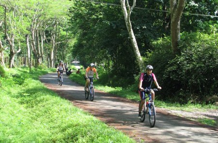 Cycling Tam Coc & Cuc Phuong National Park - 2 Days