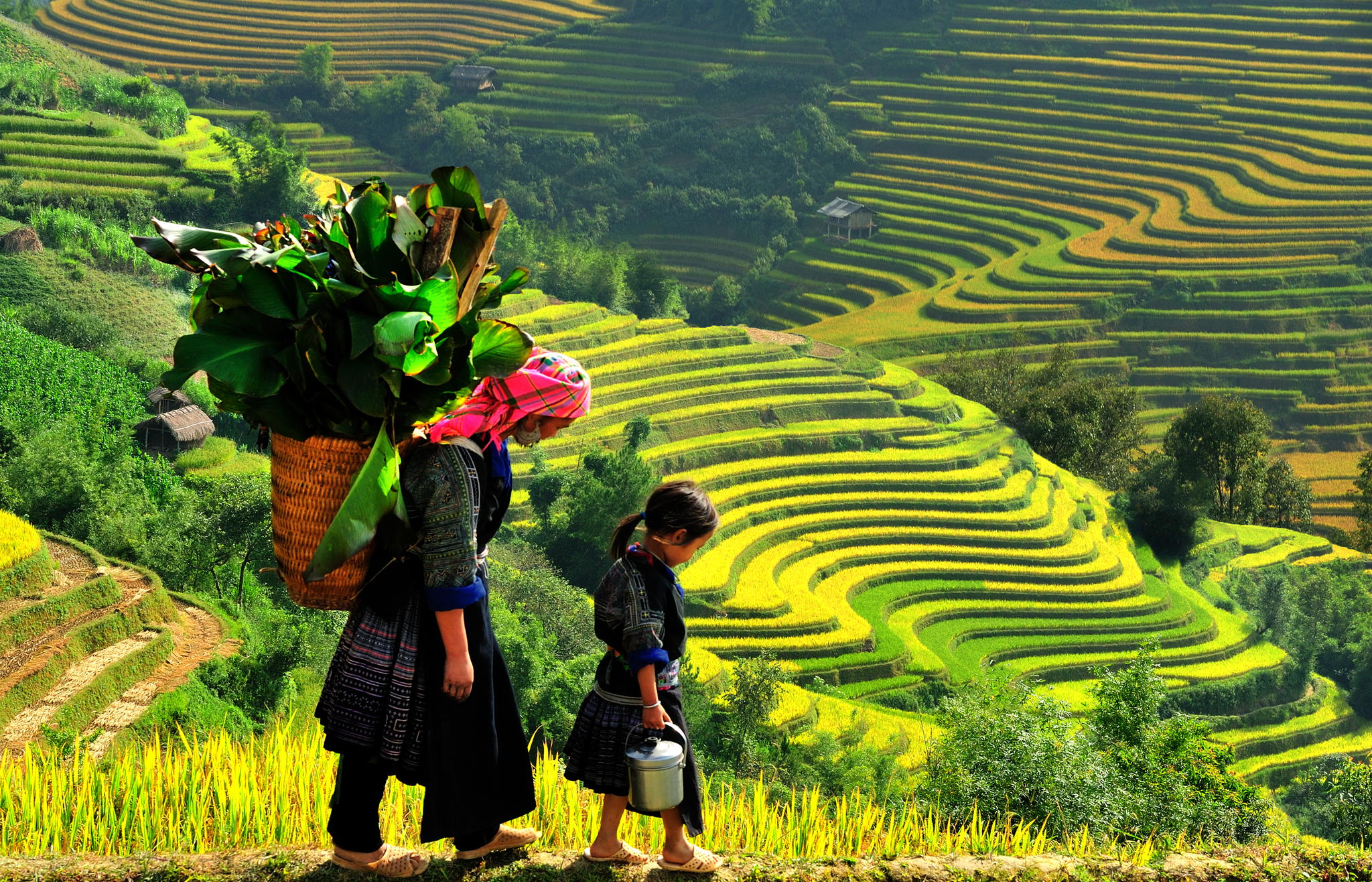 Sapa trekking 4 nights 3 days by train